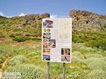 Oud Falassarna (Falasarna) Chania Kreta | Griekenland | Foto 37 - Foto van De Griekse Gids