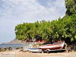 Plakias Kreta   Griekenland   De Griekse Gids foto 7 - Foto van De Griekse Gids