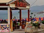 Stalis Kreta | Griekenland | De Griekse Gids foto 20 - Foto van De Griekse Gids