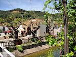 Leuk dorpje Patelari bij Platanias en Stalos (Platanias Chania Kreta - Stalos Chania Kreta) foto 3  | Chania | Kreta