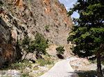 Samaria Kloof | Kreta | Griekenland foto 1 - Foto van De Griekse Gids
