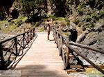 Samaria Kloof | Kreta | Griekenland foto 24 - Foto van De Griekse Gids