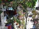 Agia Galini Kreta - Foto 71 - Foto van De Griekse Gids