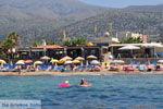 Malia Kreta | Griekenland | De Griekse Gids - foto 007 - Foto van De Griekse Gids