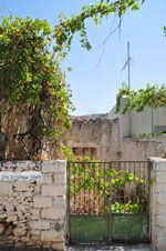 Milatos Kreta | Griekenland | De Griekse Gids - foto 010 - Foto van De Griekse Gids