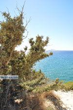 Komos   Zuid Kreta   De Griekse Gids foto 7 - Foto van De Griekse Gids