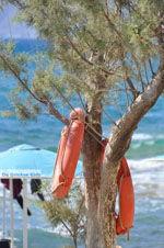 Kalamaki Kreta | Zuid Kreta | De Griekse Gids foto 29 - Foto van De Griekse Gids