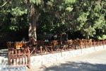 Preveli | Zuid Kreta | De Griekse Gids foto 40 - Foto van De Griekse Gids