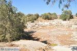 Komos | Zuid Kreta | De Griekse Gids foto 39
