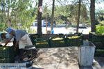 Panagia Kaliviani bij Mires  Zuid Kreta   De Griekse Gids foto 22