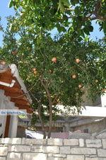 Kamilari   Zuid Kreta   De Griekse Gids foto 43 - Foto van De Griekse Gids